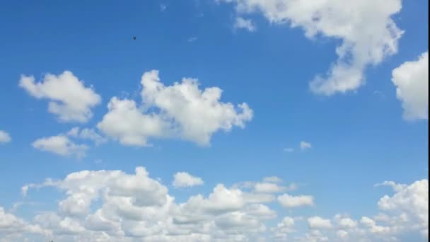 Blue sky and white cloud.