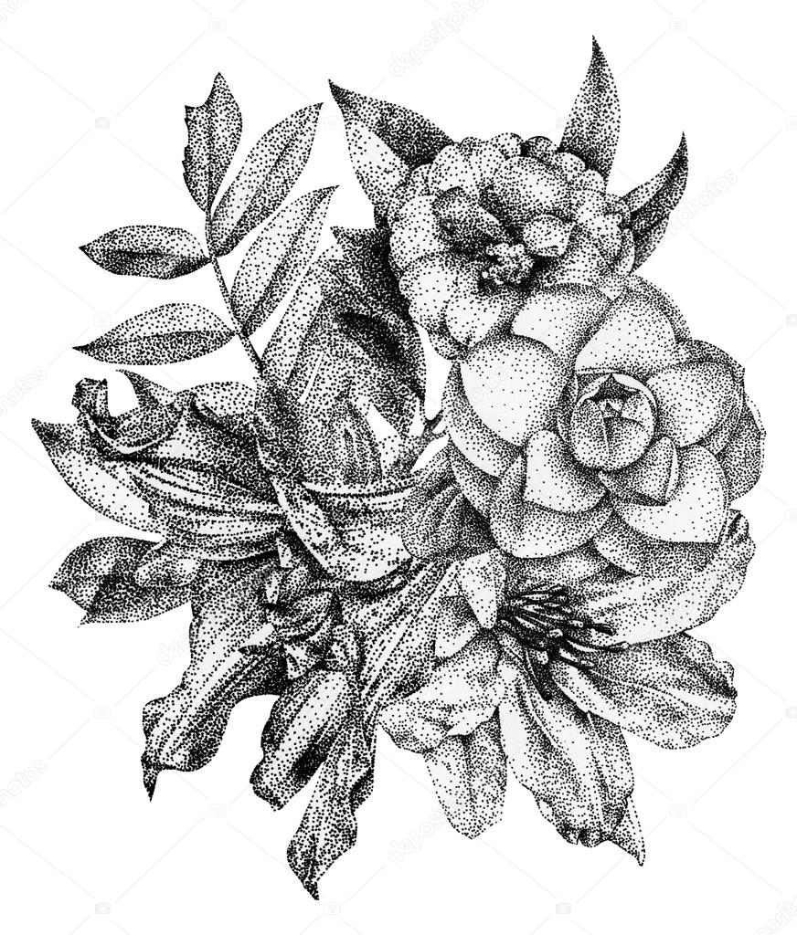Composition of different flowers and plants drawn by hand