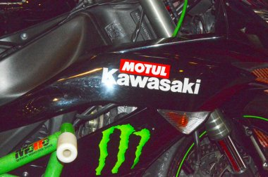 Moto Park 2015 Kawasaki Motorcycle Gas Tank