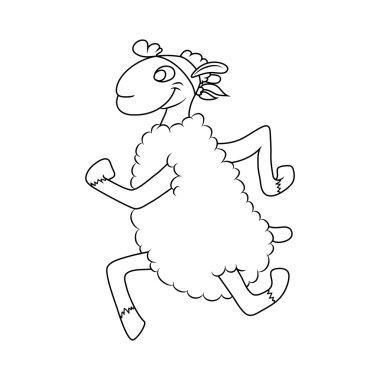 sports lamb