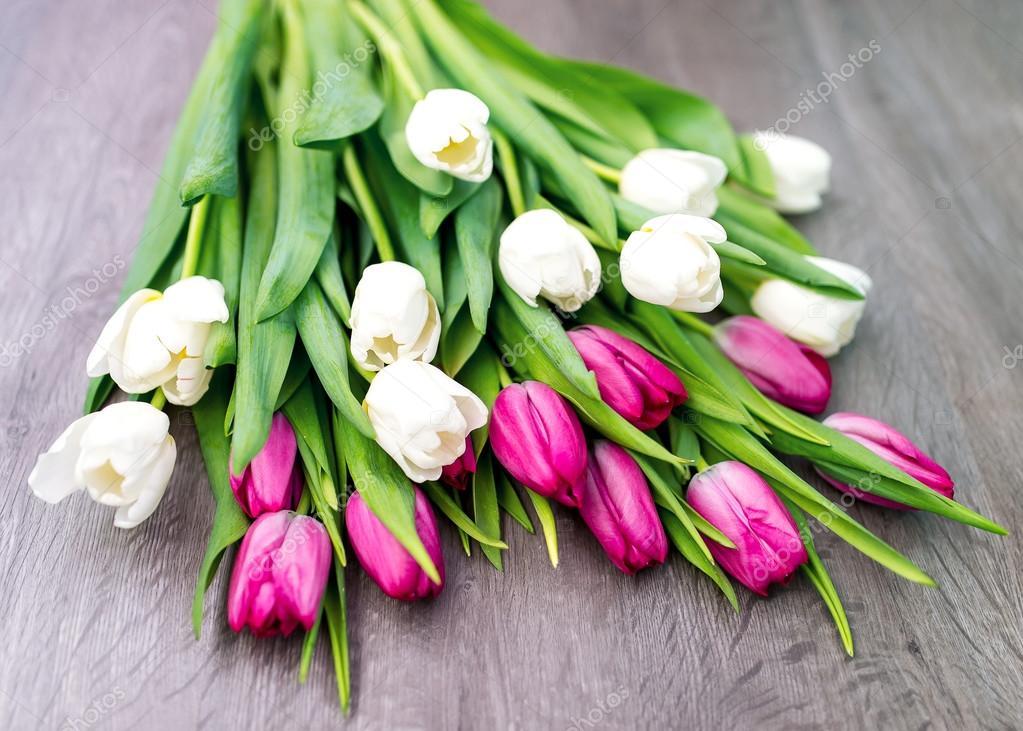 Diez blanco y 10 tulipanes rosa — Fotos de Stock © avk78 #101713448