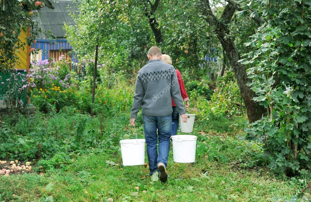 gardeners bear water in buckets