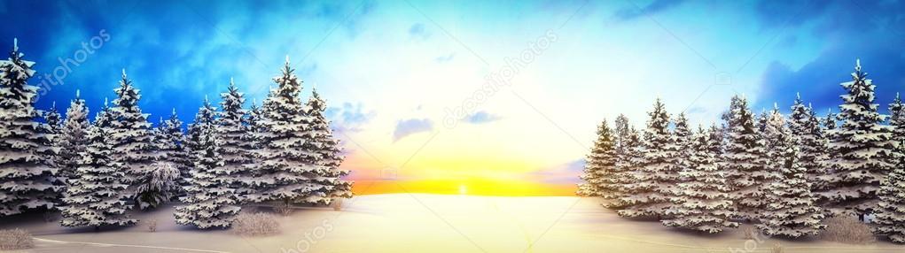 winter landscape - shot 5