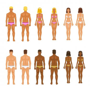 vector young woman and guy in underwear. Body templates