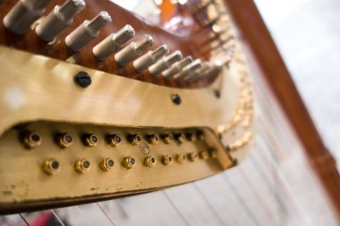 musical instrument called harp