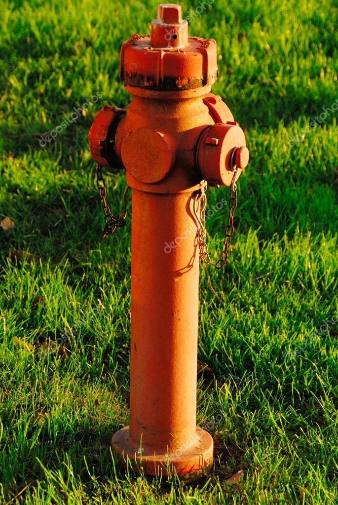 Red hydrant  in the meadow