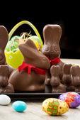 Fotografie Chocolate Easter bunnies