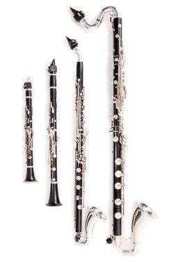 Clarinet family  close up