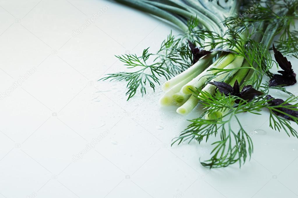 Frischer Schnittlauch, Basilikum und Dill auf einem weißen ...