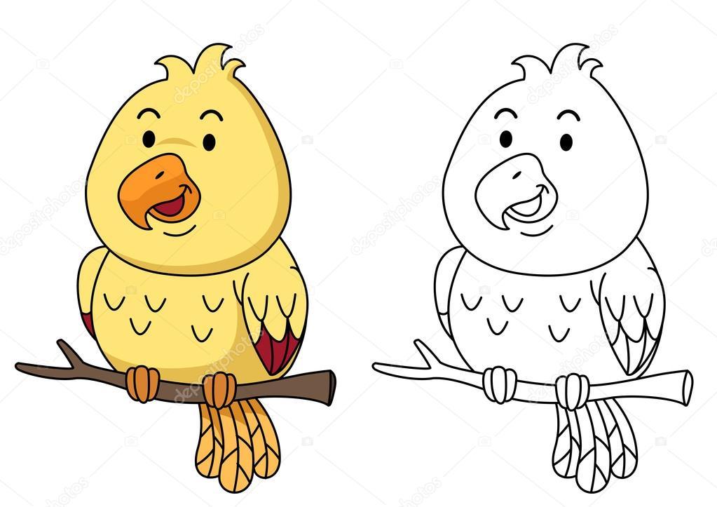 Eğitim Boyama Resmi Kitap Kuş Stok Vektör Jehsomwang 109968074