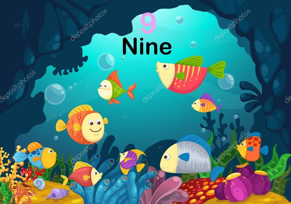 number nine fish under the sea vector