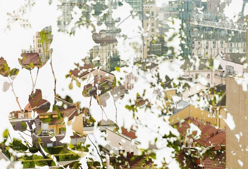 Double exposure of leaves and cityscape
