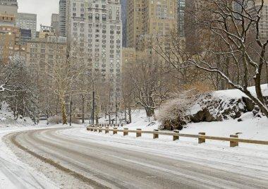 Central Park with snow and Manhattan skyline, New York City