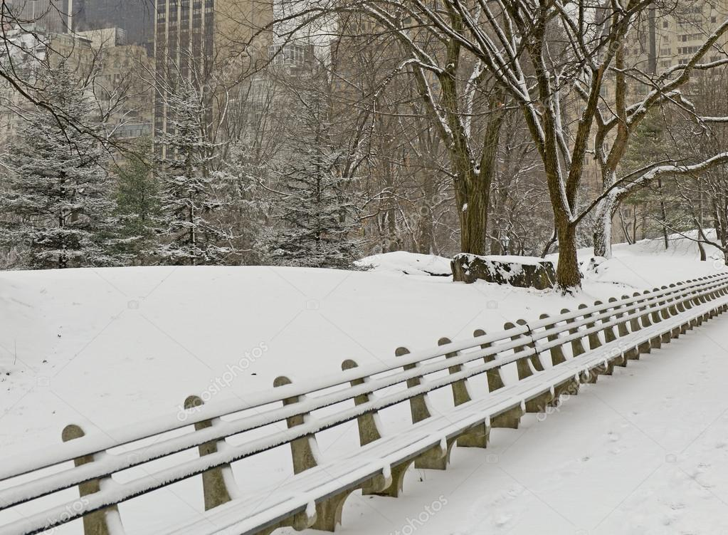 Central Park with snow and Manhattan skyline, New York City