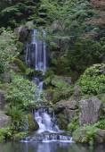 Japonské zahradní krajina