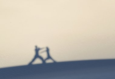 Martial artists silhouettes and shadows