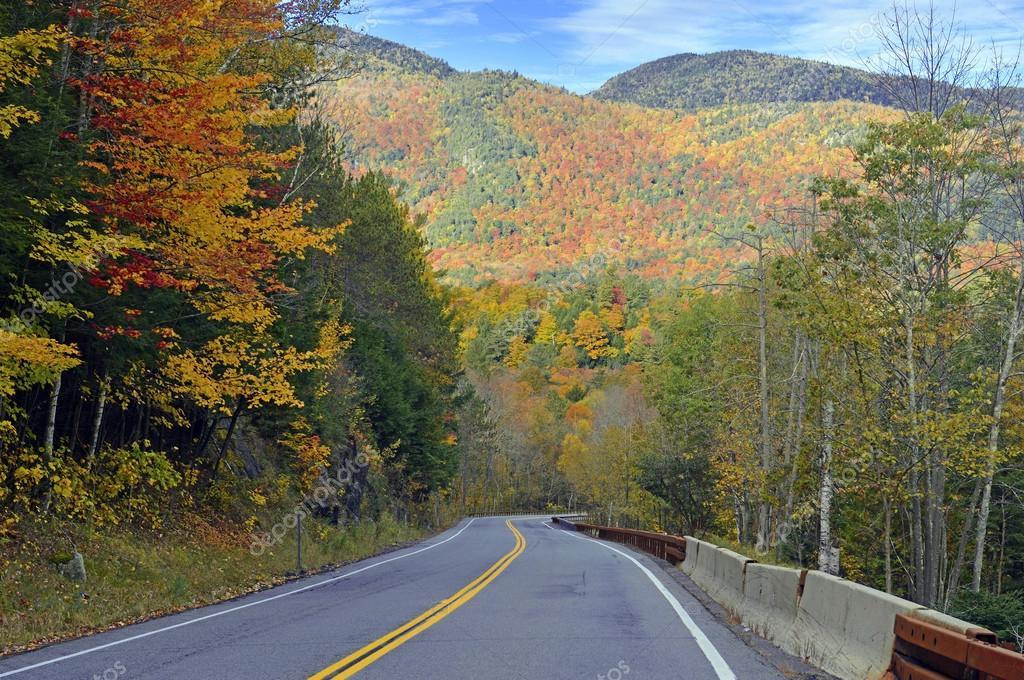 Autumn leaves in Fall colors, Adirondacks, New York