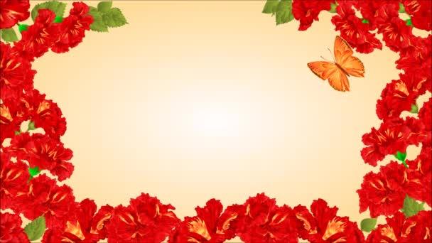 Motýl Lycaena virgaureae a rudé ibišky video