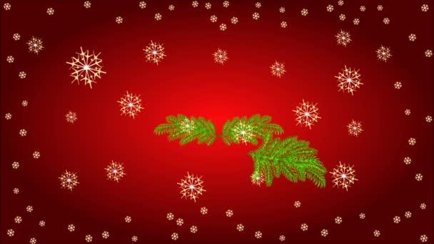 Adventskranz mit weißen Weihnachtsstern-video