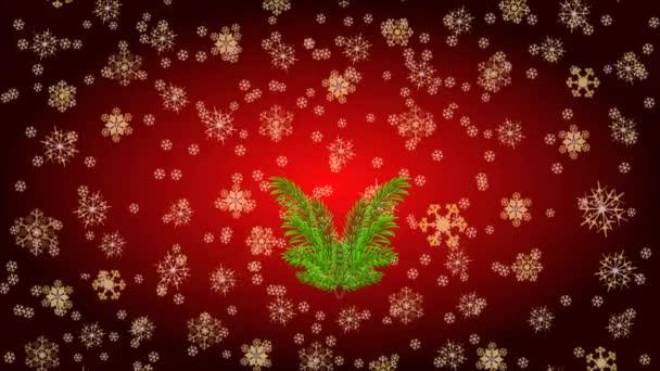 Veselé Vánoce červená svíčka holly a vánoční hvězda video