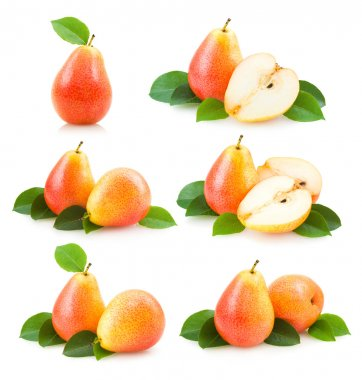 6 pear images