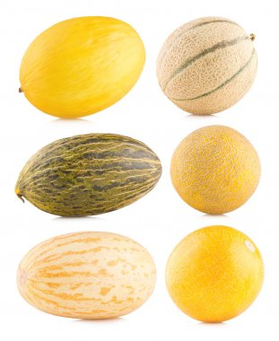 Collection of 6 different melon