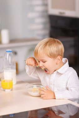 Small boy eats cornflakes with lots of appetite.