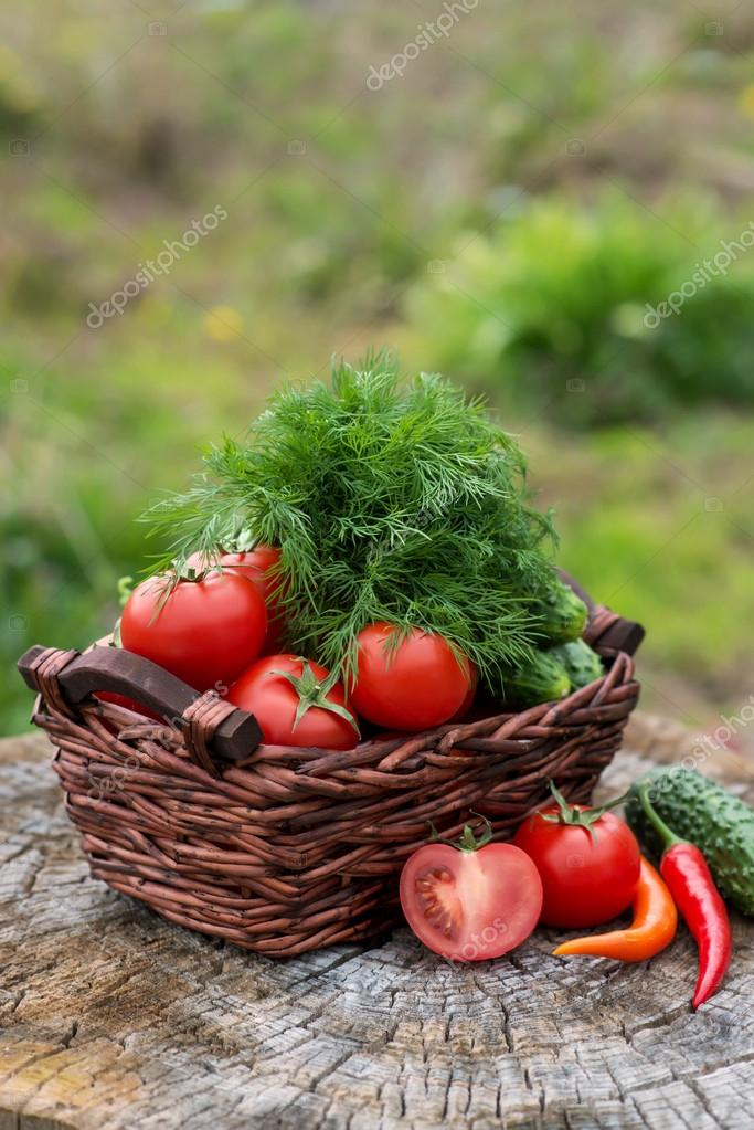 Basket and wooden plate with fresh vegetables (tomatoes, cucumbe