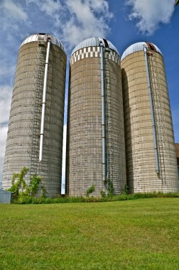 Three white stave silos