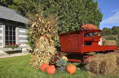 Pumkins and corn stalks syrround an old red wagon.