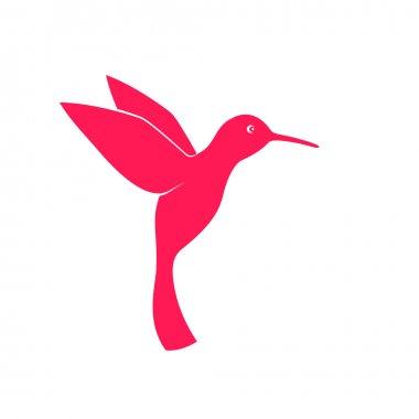 Colibri, hummingbird, abstract vector illustration