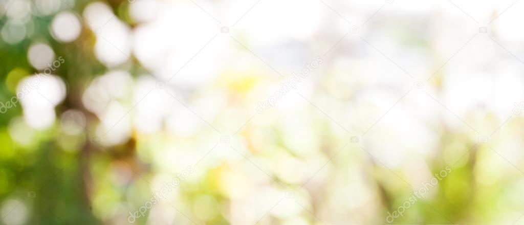 Abstract nature bokeh background Golden heaven light Blurred background from nature with sun splash and gold leaves