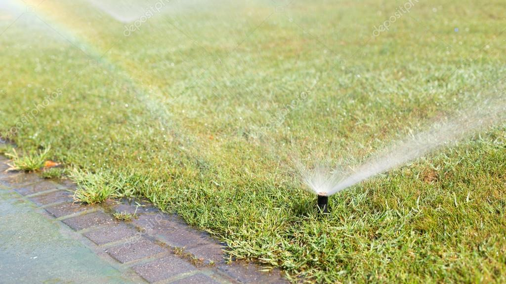 Outdoor sprinkler working on a green grass lawn