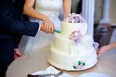 nevěsty a ženicha na svatební hostiny, krájení dortu