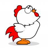 Fotografia pollo