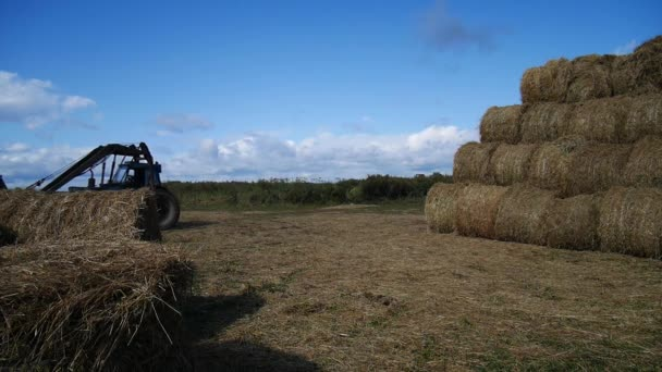 Tractor loading hay bales during agricultural works