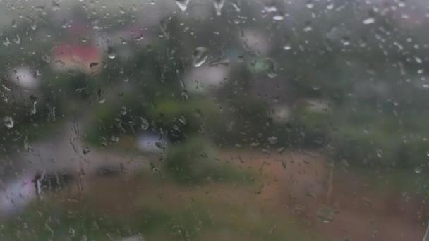 Сьогодні на Прикарпатті цілий день дощитиме