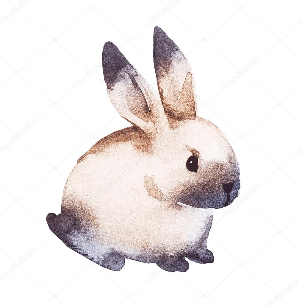 Cute rabbit. Watercolor hand drawing Illustration.
