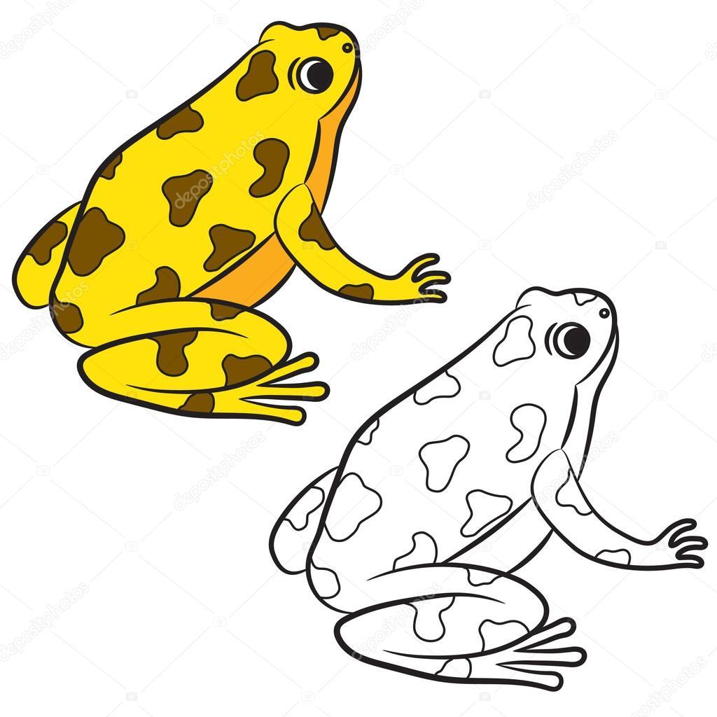 Dibujos animados de ranas venenosas. Página para colorear. Vector de ...