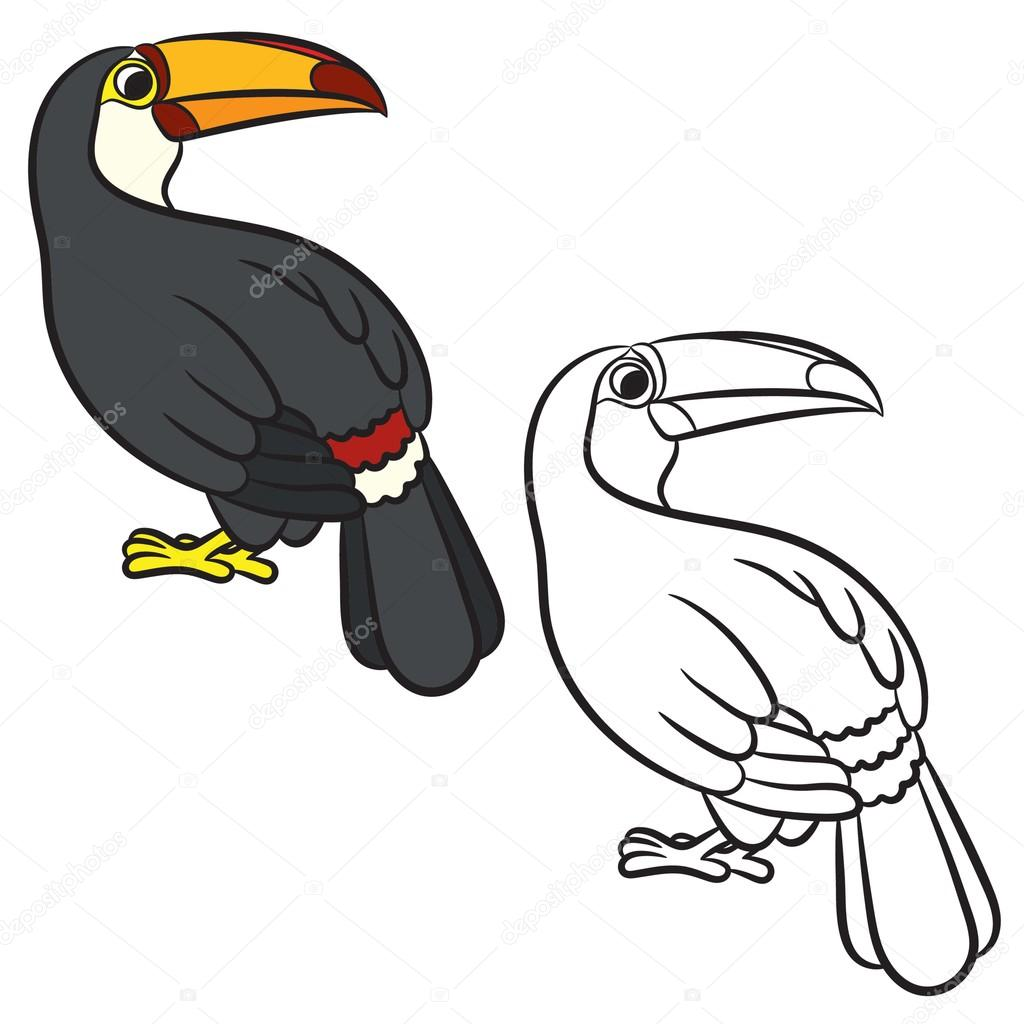 Dibujo de pájaro tucán. Página para colorear — Vector de stock ...
