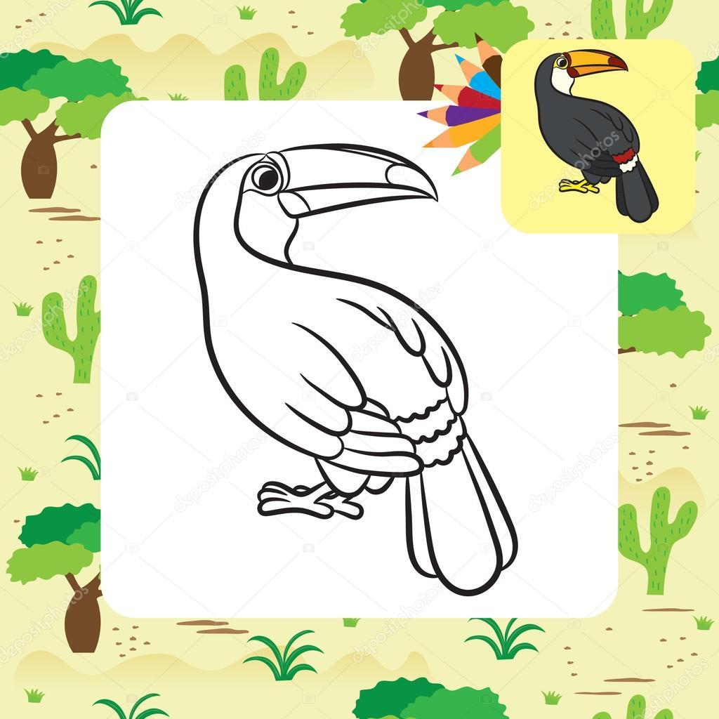 Dibujo de pájaro tucán. Página para colorear — Archivo Imágenes ...