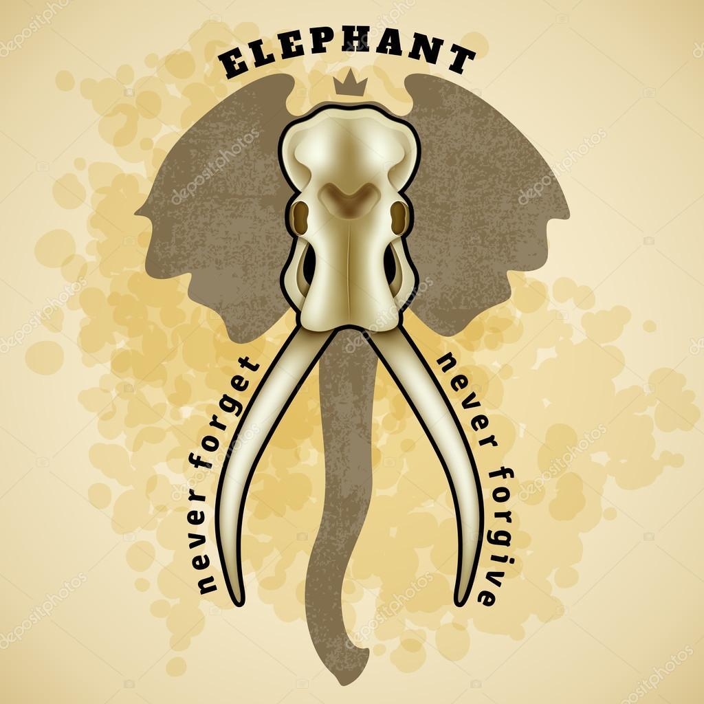 Cráneo de elefante Vector — Vector de stock © Helen_Adamova #89412606