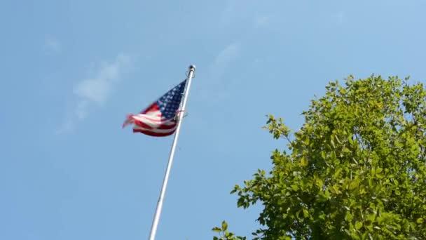 American (USA - United States of America) flag - green tree - blue sky - sunny