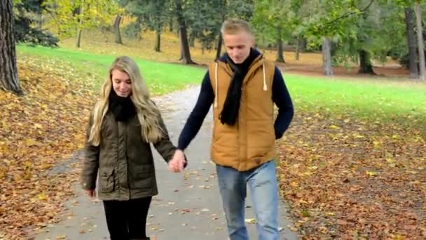 Young model couple in love - autumn park(nature) - couple (man and woman) walking in park - couple holding hands - couple talking - happy couple - steadicam