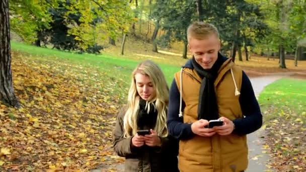 Young model couple in love - autumn park(nature) - couple (man and woman) walking in park - happy couple - woman on phone and man on phone (write message)