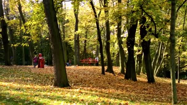 Playground - people relax -  Autumn park (forest - trees) - Fallen leaves - family