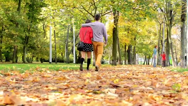 Autumn park (forest - trees) - fallen leaves - grass - people in background (friends and family)