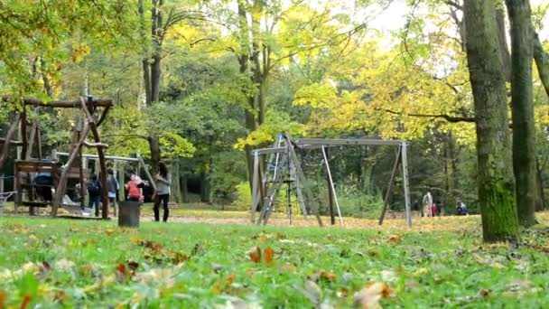 Playground - people relax -  Autumn park (forest - trees) - Fallen leaves