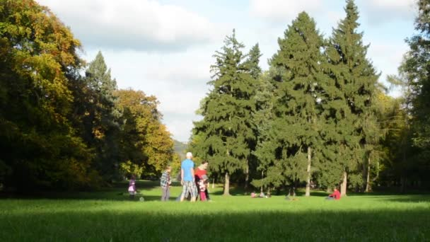 Autumn park (forest - trees) - people relax - grass - children play - family on walk