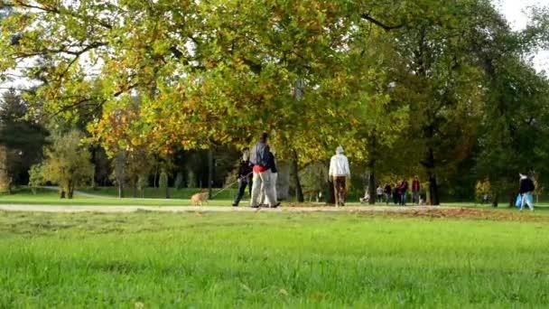 Podzimní park (stromů) - lidí, kteří jdou - listí - tráva